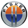 Looking for Fisker car parts?