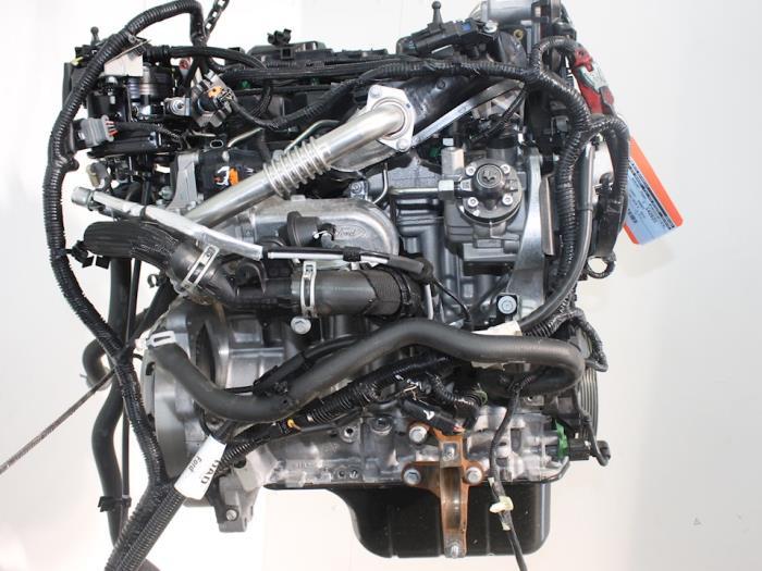 Motor Ford Focus 2016367 XXDC,XXDCXXDA 5