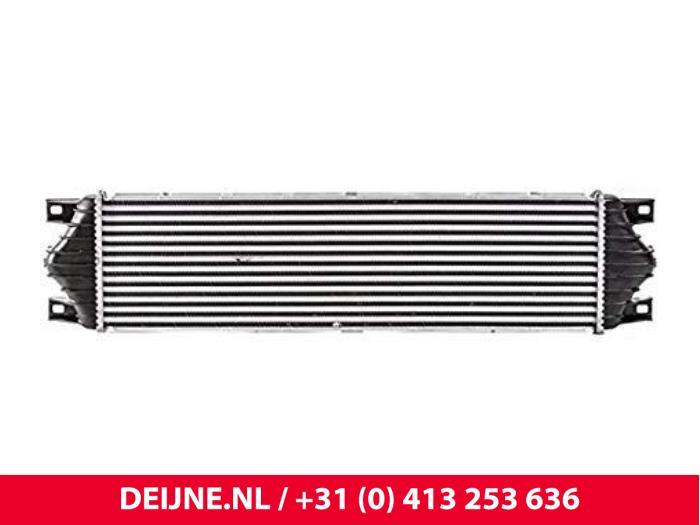 Intercooler - Renault Master