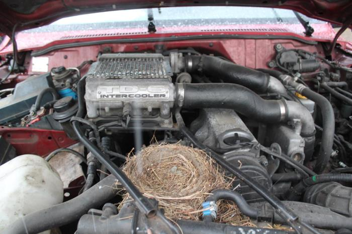 Nissan Patrol GR (Y61) 2.8 GR TDi-6