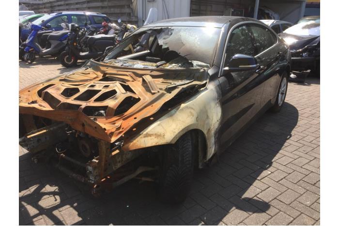BMW 4-Serie 418d 2.0 16V 2015-07 / 0-00