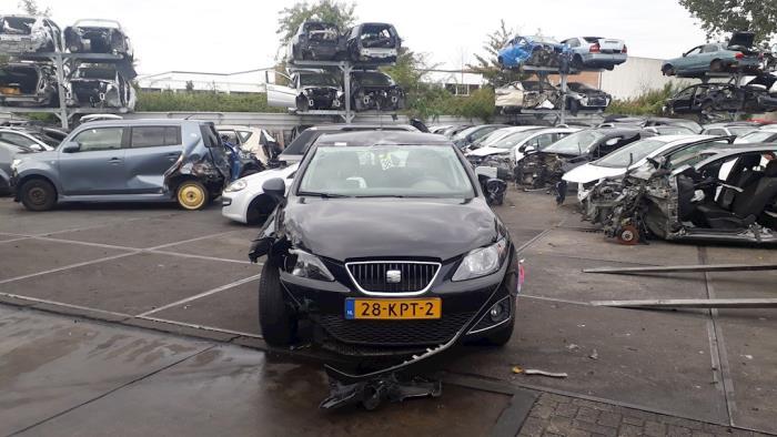 Seat Ibiza - V10181