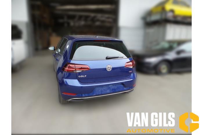 Volkswagen Golf 12- 2017  DGT 4