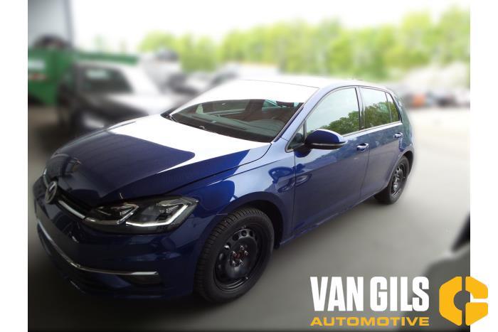 Volkswagen Golf 12- 2017  DGT 1