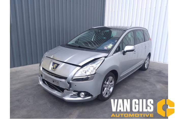 Peugeot 5008 09- 2012  5FV 18