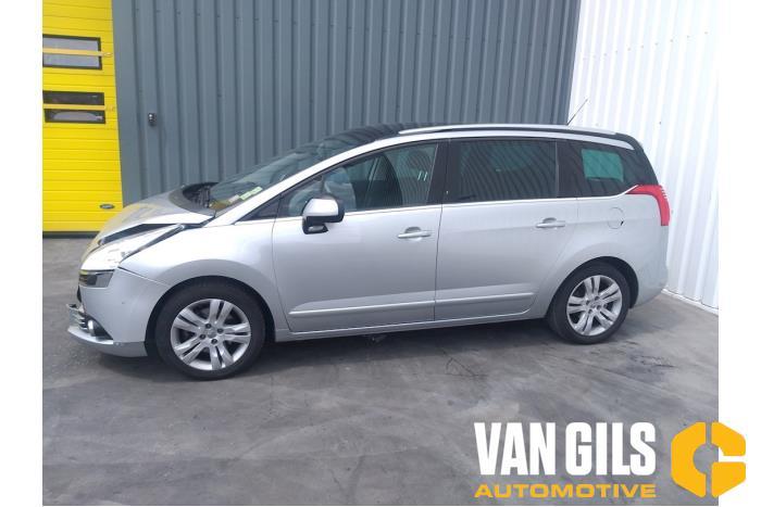 Peugeot 5008 09- 2012  5FV 19