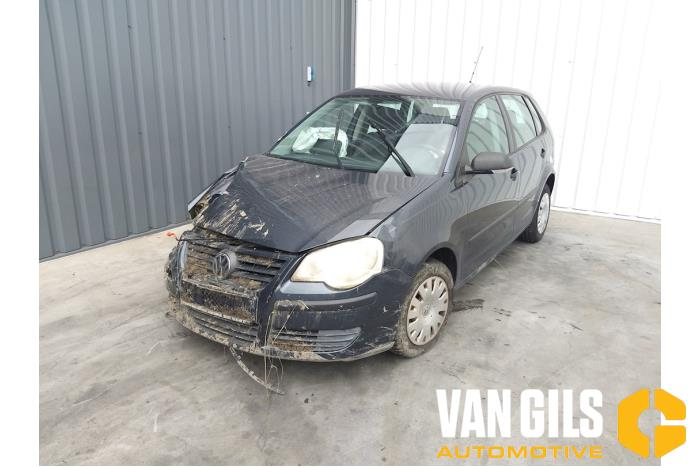 Volkswagen Polo 2005  BMD 12
