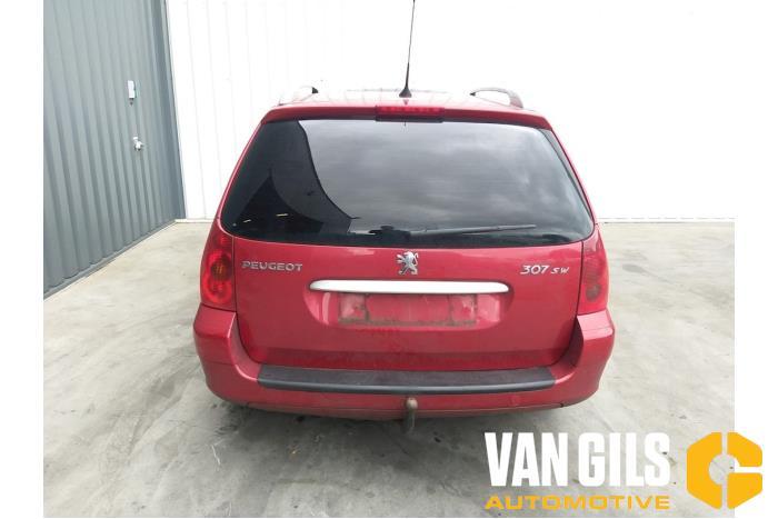 Peugeot 307 2003  NFU 1