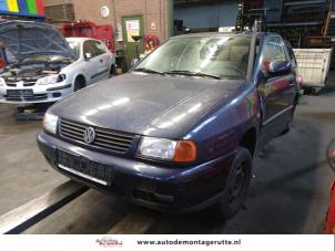Demontage auto Volkswagen Polo 1997-2002 204464