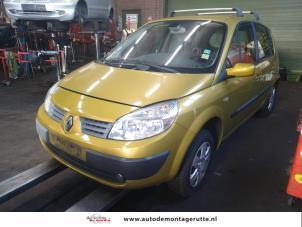 Demontage auto Renault Scenic 2003-2009 213061