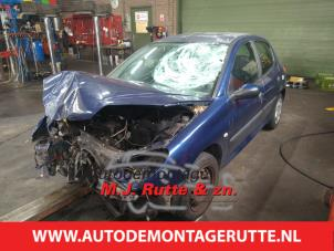 Demontage auto Peugeot 206 1998-2012 213951